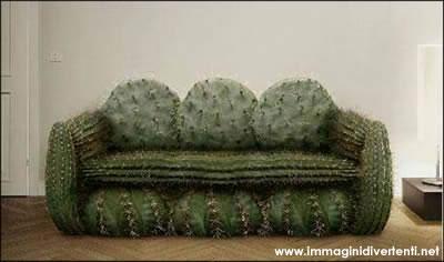 Immagine Divertente Divano: Divano cactus